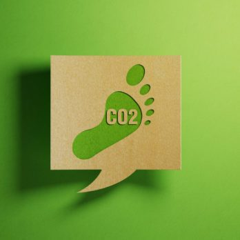 40 of the Latest and Greatest Ways to Reduce Your Carbon Footprint at Home