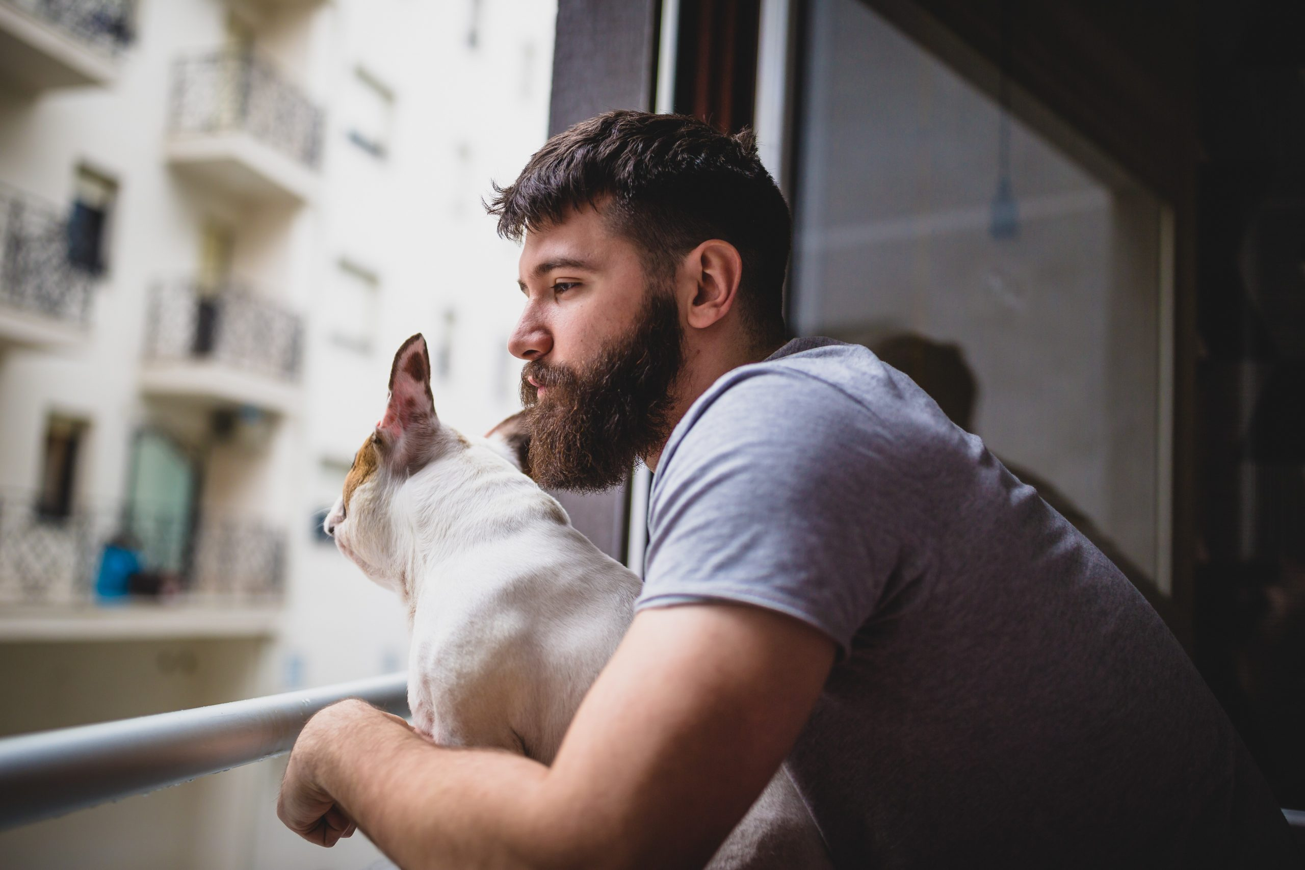 Waking up with his dog, looking through the window
