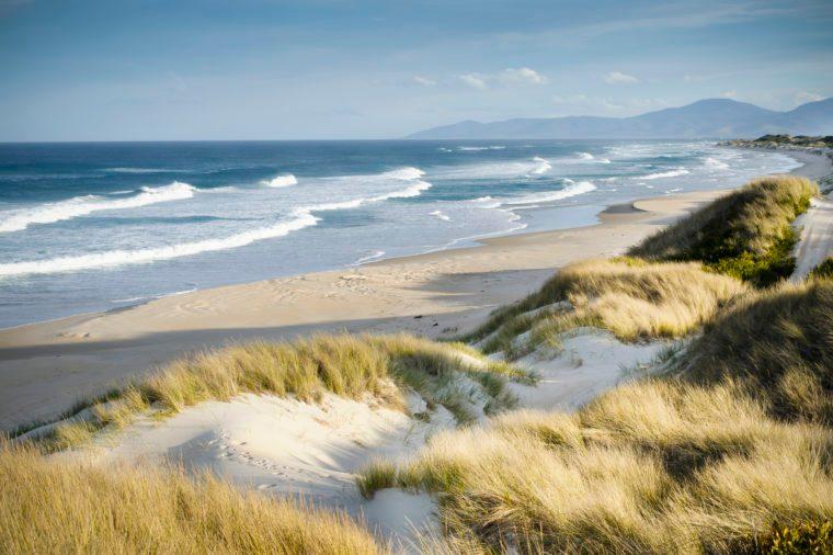 Windswept coastal landscape. Marouard Beach, Tasmania