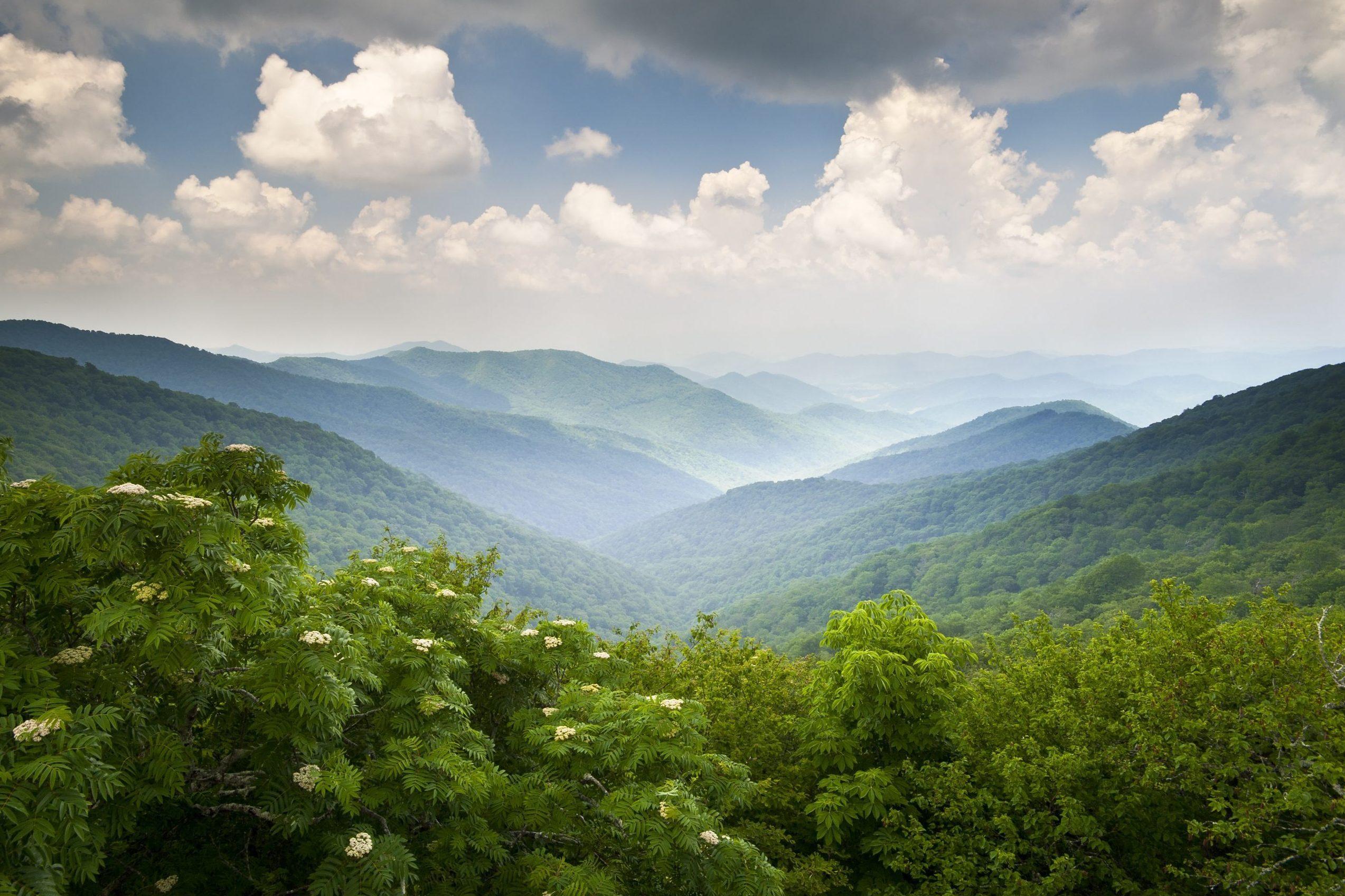 Blue Ridge Parkway Scenic Mountains Overlook Summer Landscape Asheville NC