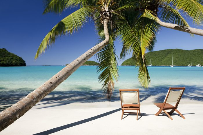 chairs under palm trees at a beach in Virgin Islands