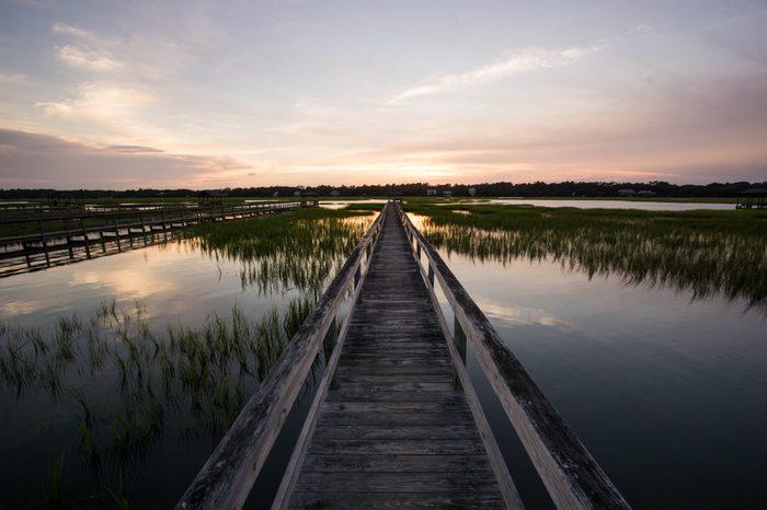 boardwalk on the marsh