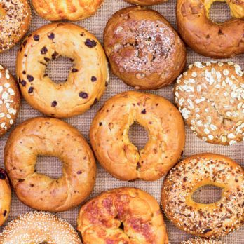 The Best Bagel Shop in Every State