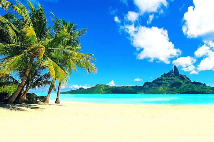 Bora Bora Tahiti Beach Mt Otemanu Palm Trees