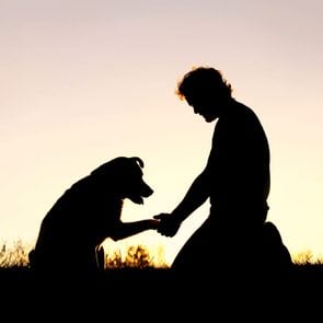 Silhouette of Man Shaking Hands with his Loyal Pet Dog