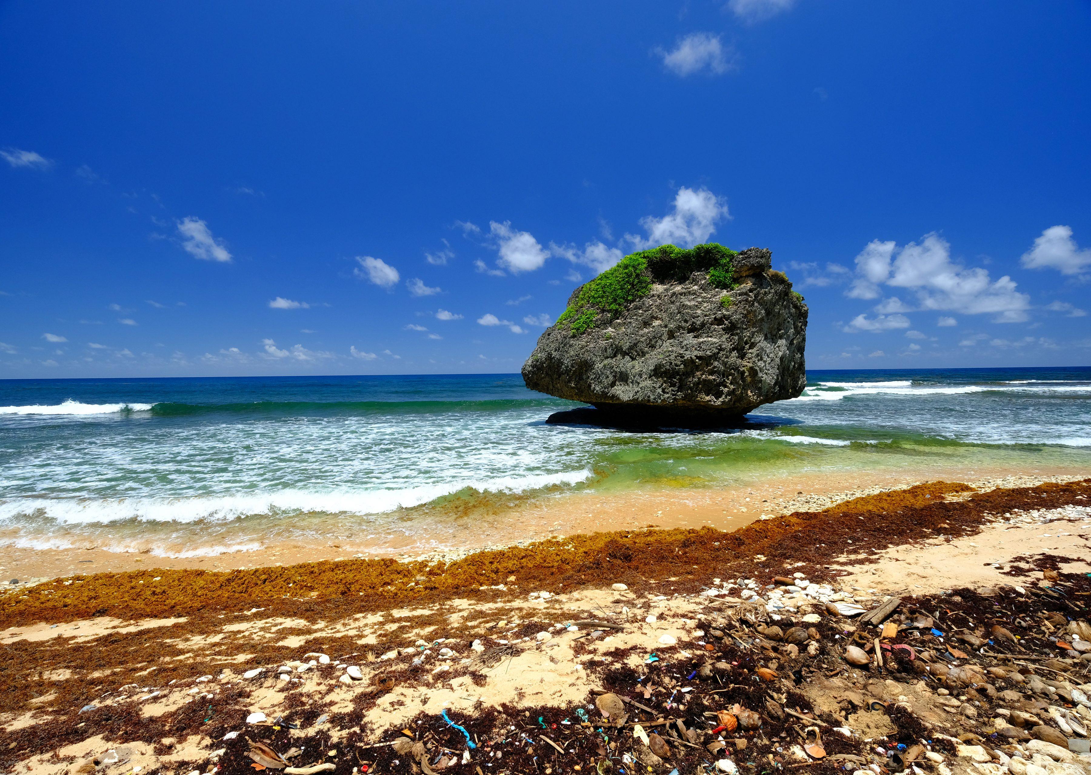 Beautiful Bathsheba Beach in Barbados