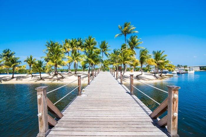 Dock, Sand, Sea and Palm Trees