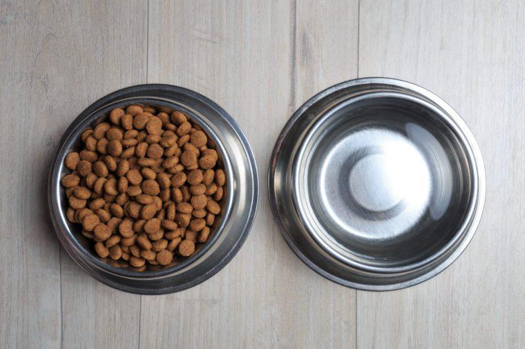 Dog feed theme