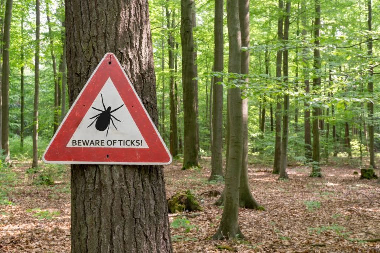 tick insect warning sign