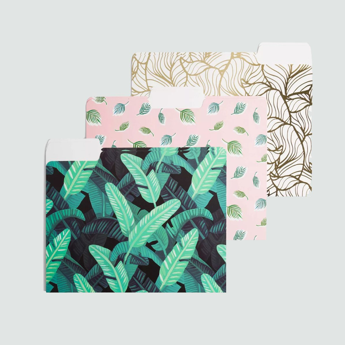 plant file folder