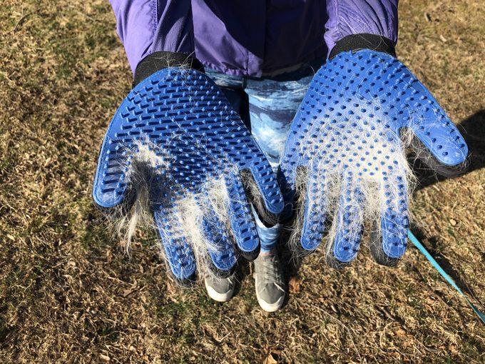 dog hair gloves