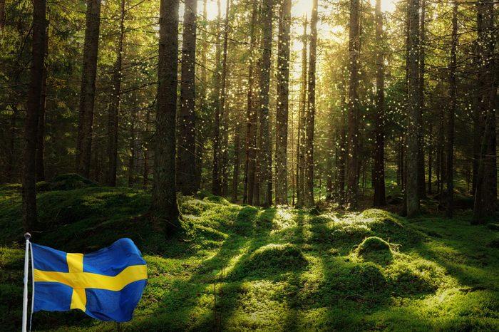 sweden environment