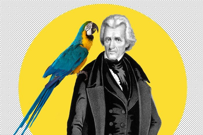 Andrew Jackson and Parrot