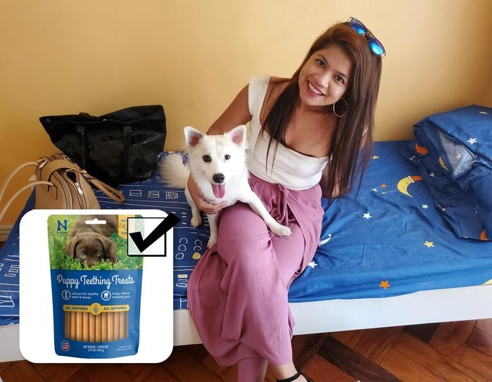 pet owner and recommended product