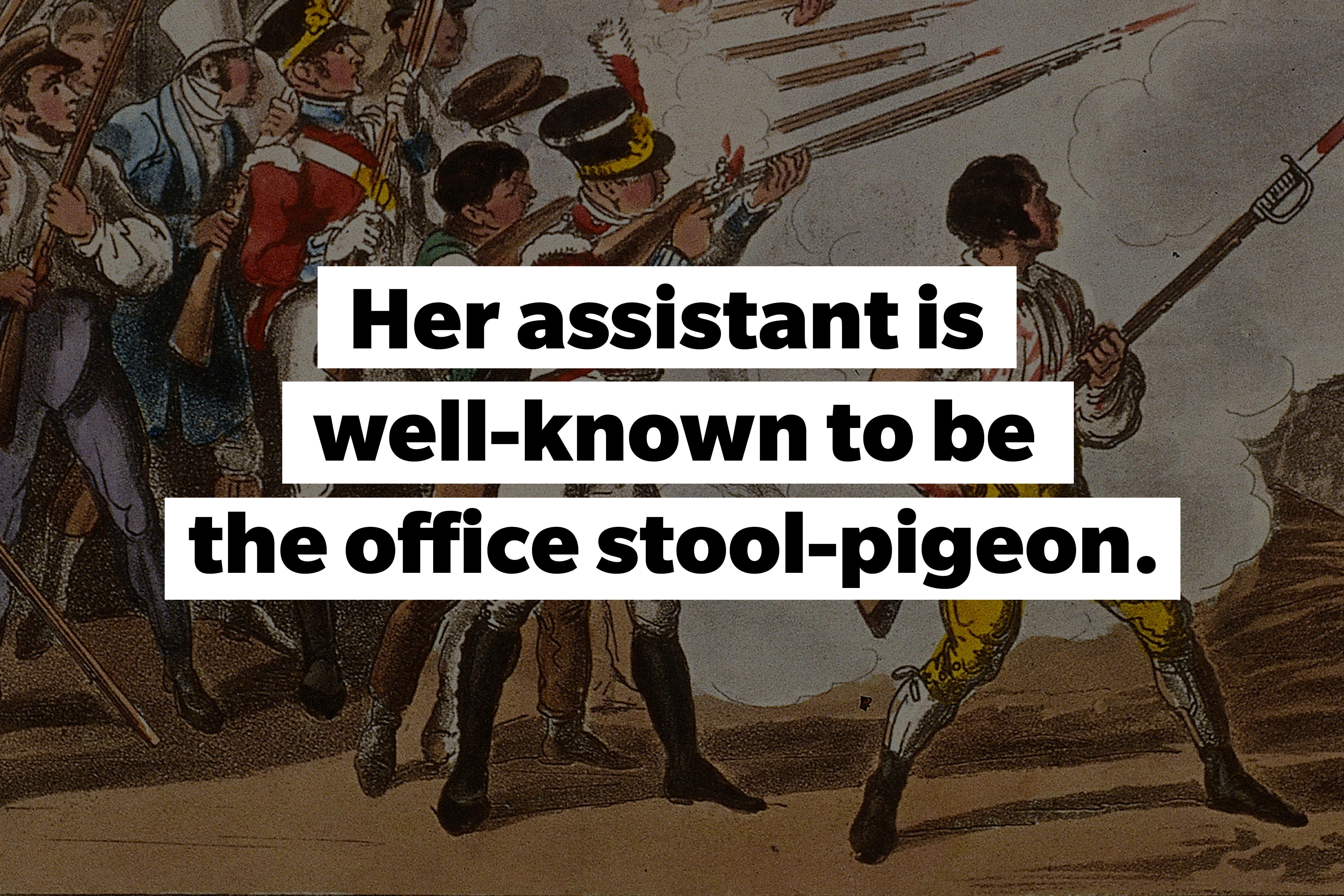 slang words Stool-pigeon