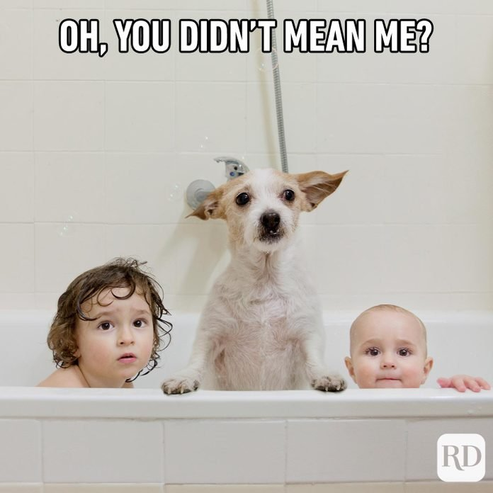 Dog beside two children in bathtub. Meme text: Oh, you didn't mean me?
