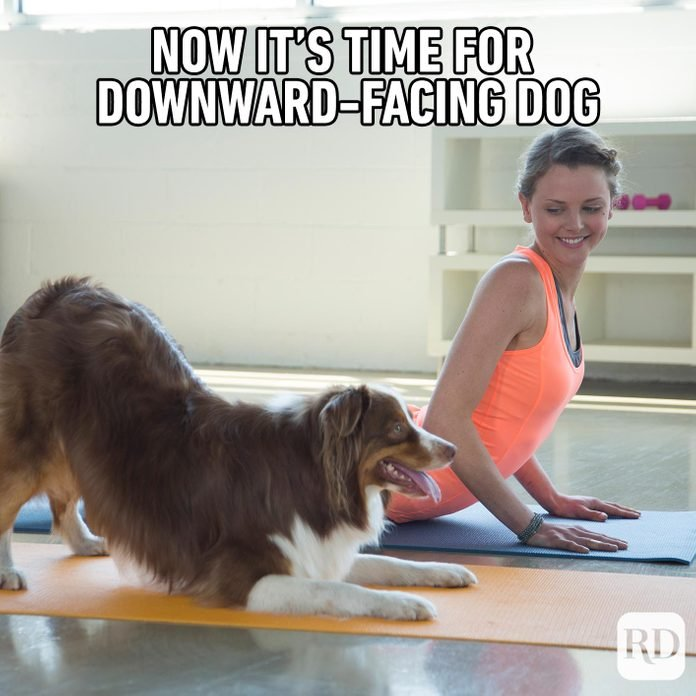 Woman doing yoga with her dog. Meme text: Now it's time for downward-facing dog