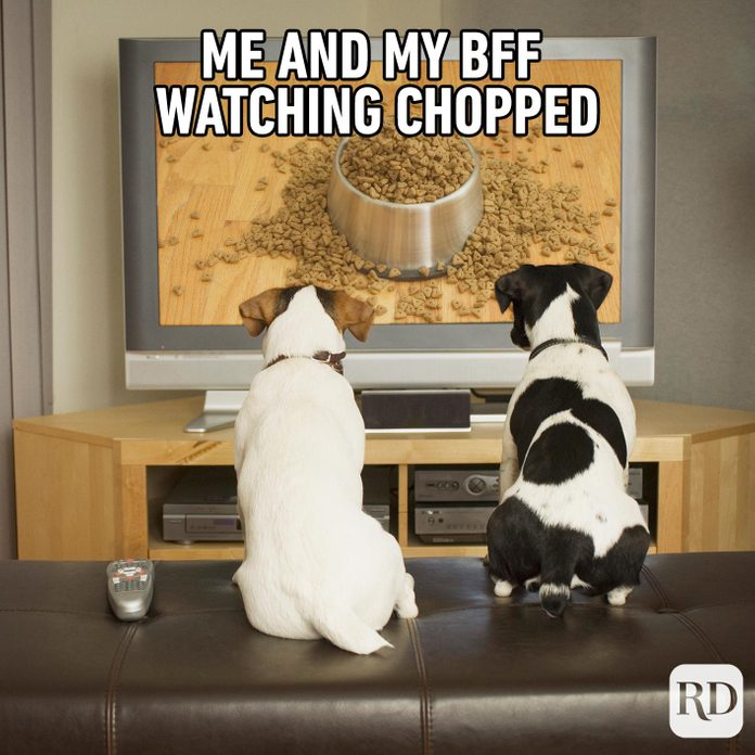 Two dogs watching a kibble commercial on TV. Meme text: Me and my bff watching Chopped