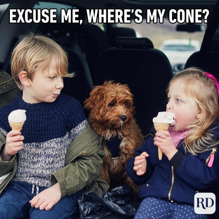 Dog staring at two children who are eating ice cream. Meme text: Excuse me, where's my cone?