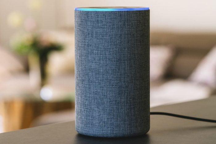 voice controlled smart speaker