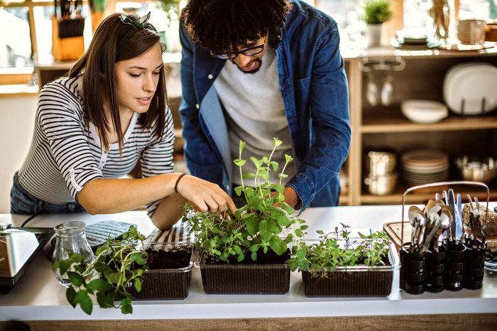 Multi-ethnic couple taking care of kitchen herbs