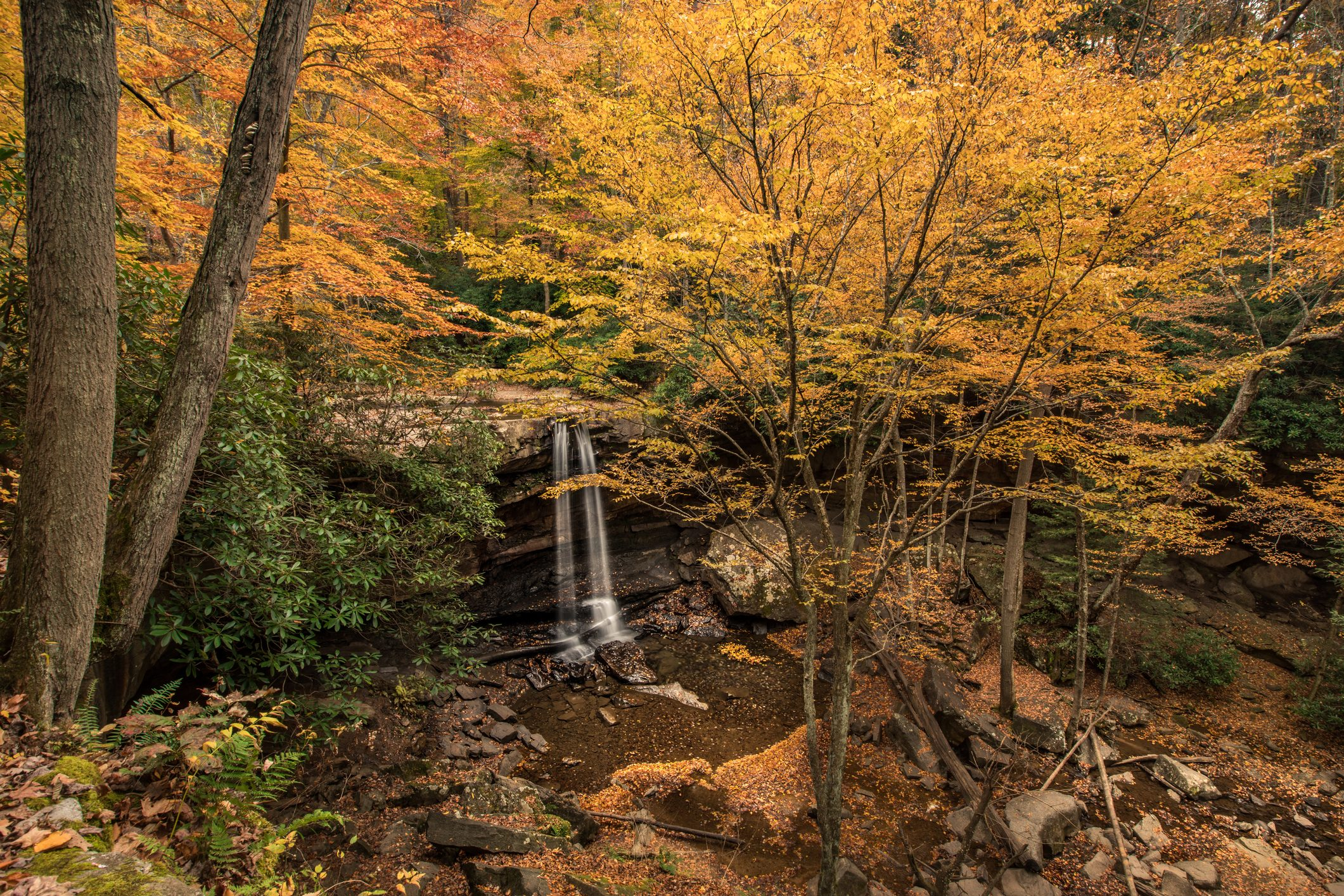 Pennsylvania Laurel Highlands Waterfall in the Fall