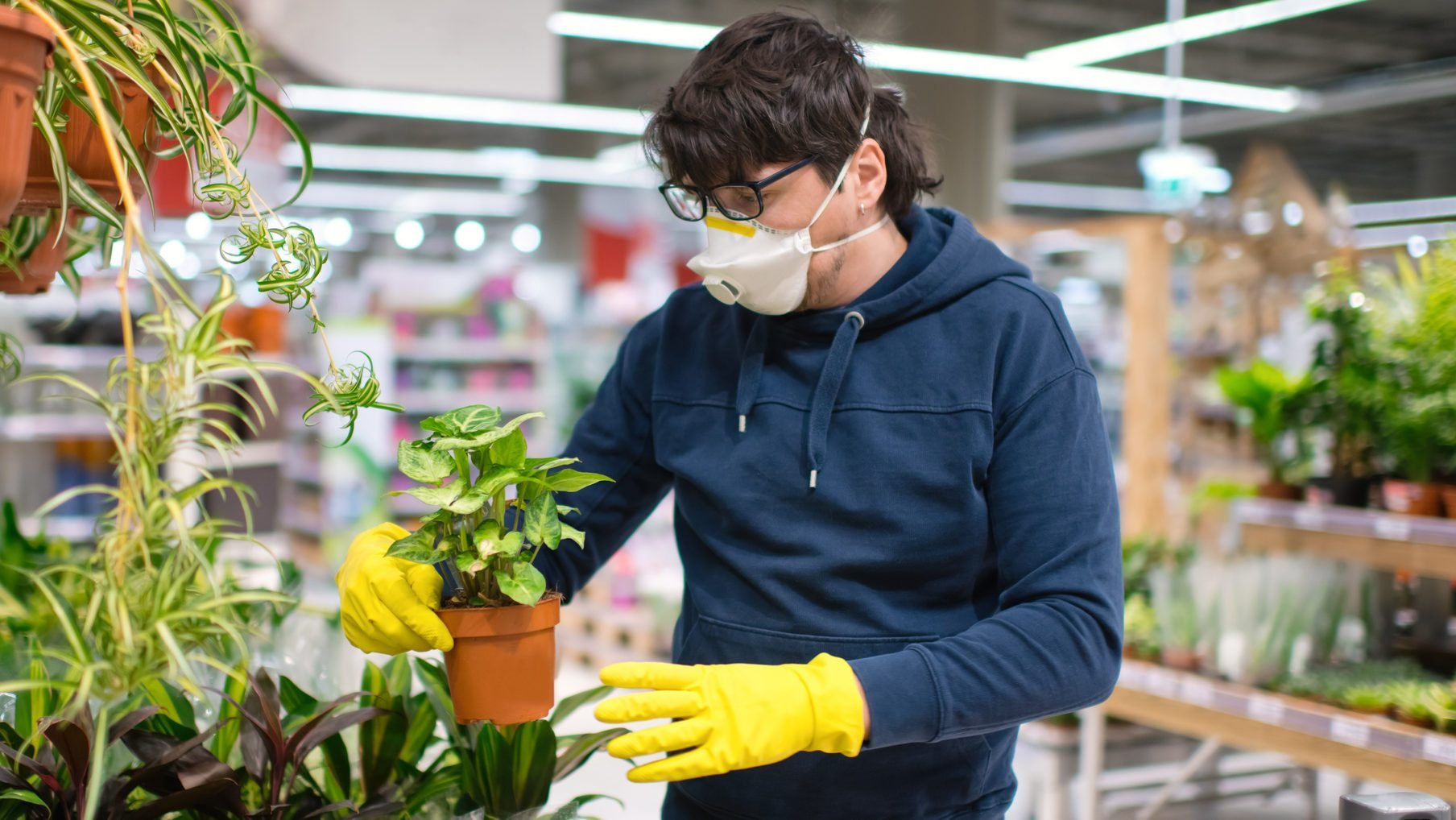 Man in mask and rubber gloves choosing a plant in a garden center