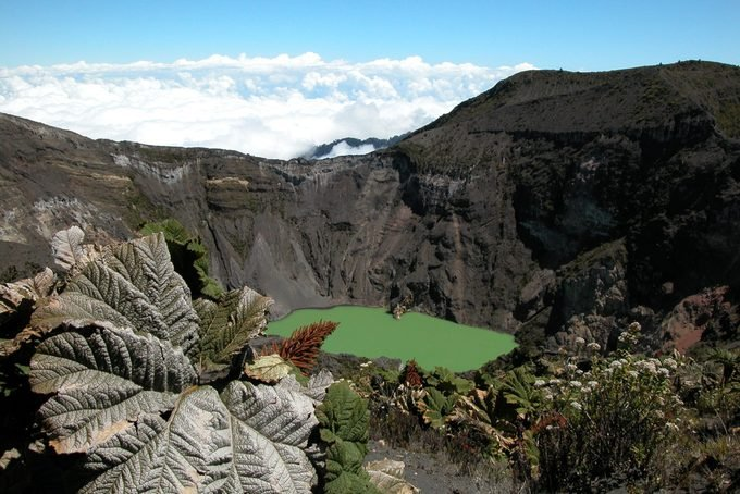 Irazu Volcano Crater and Plants Above Clouds, Costa Rica