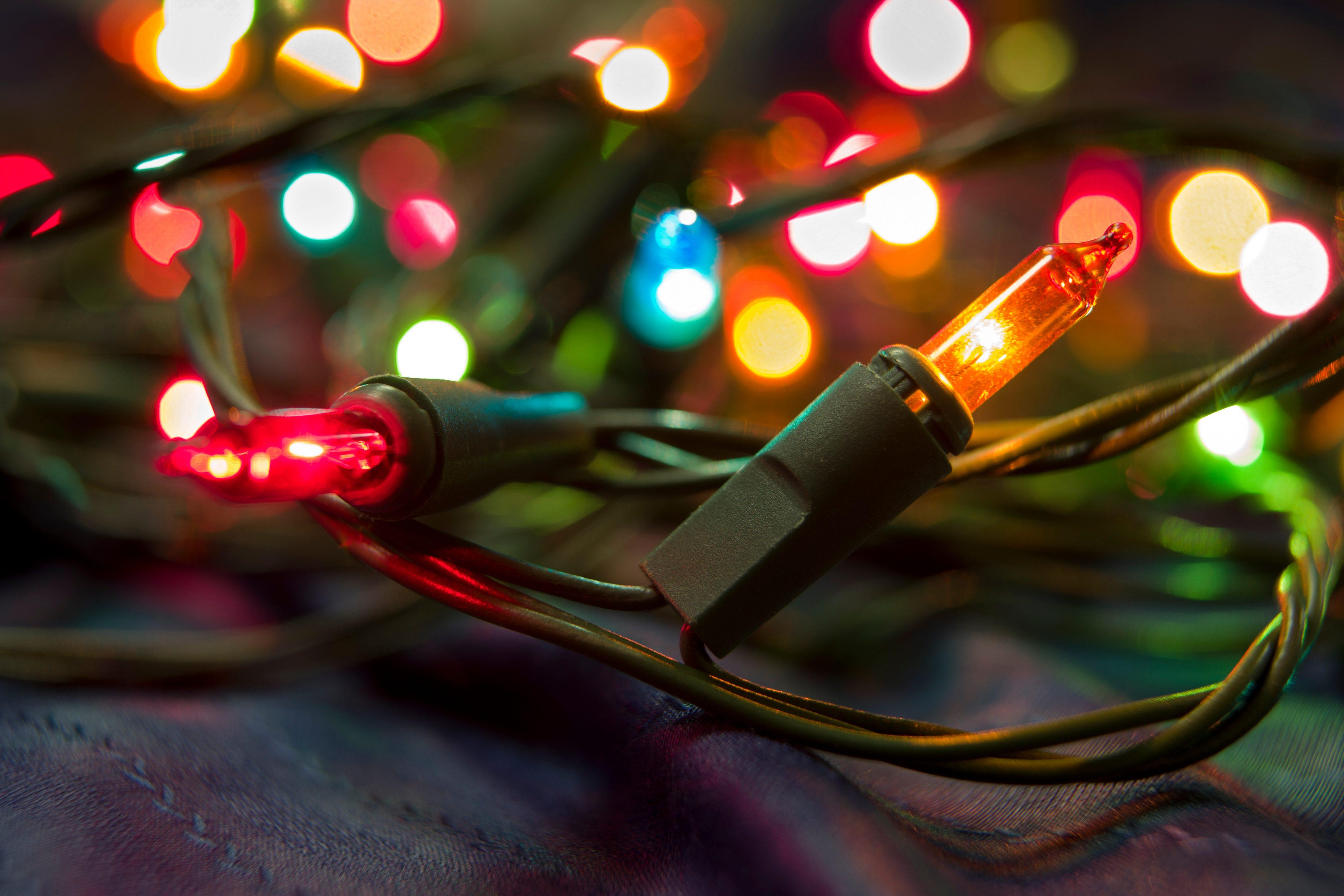 Illuminated colored Christmas fairy lights