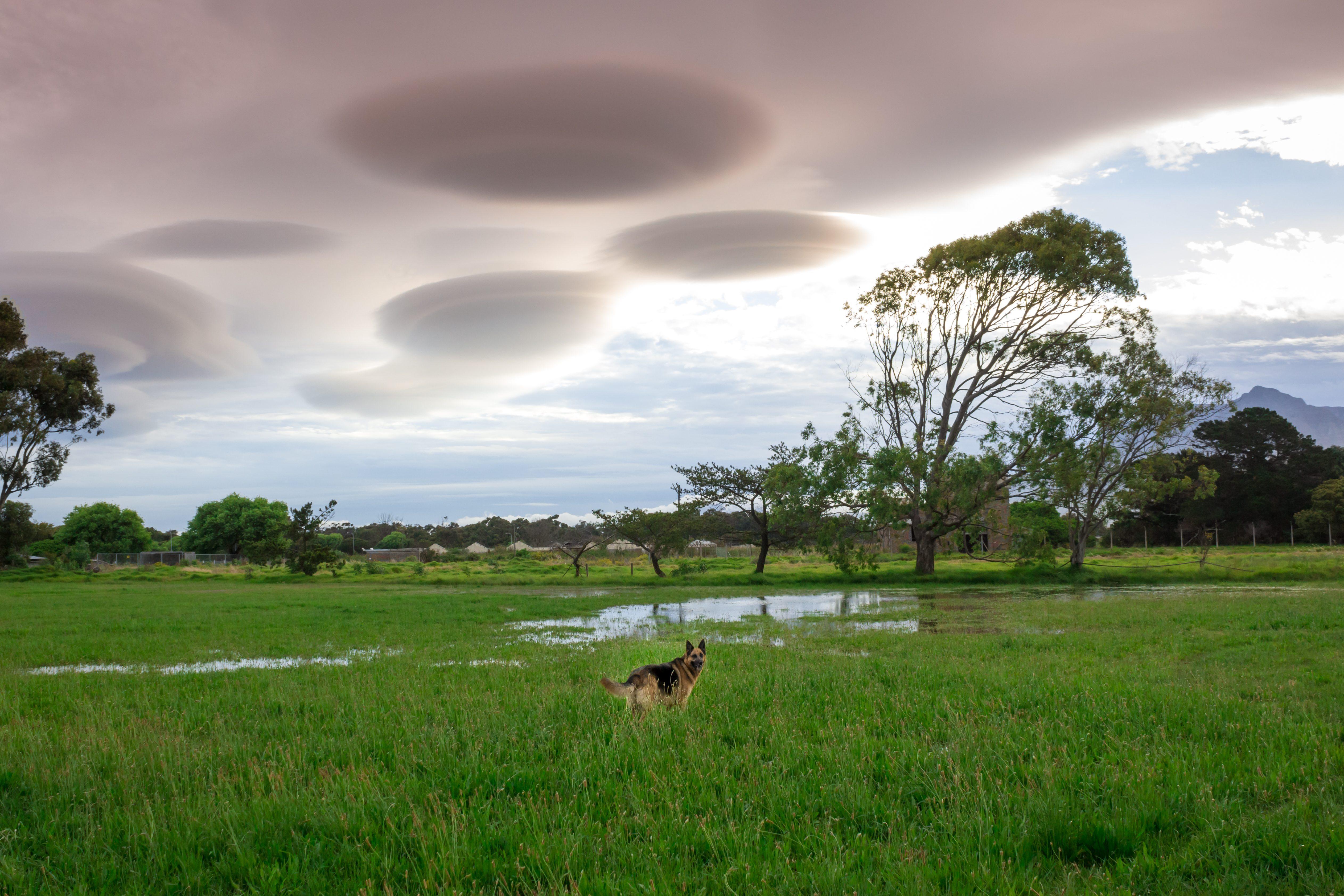 UFO clouds cloud landscape, Cape Town, South Africa