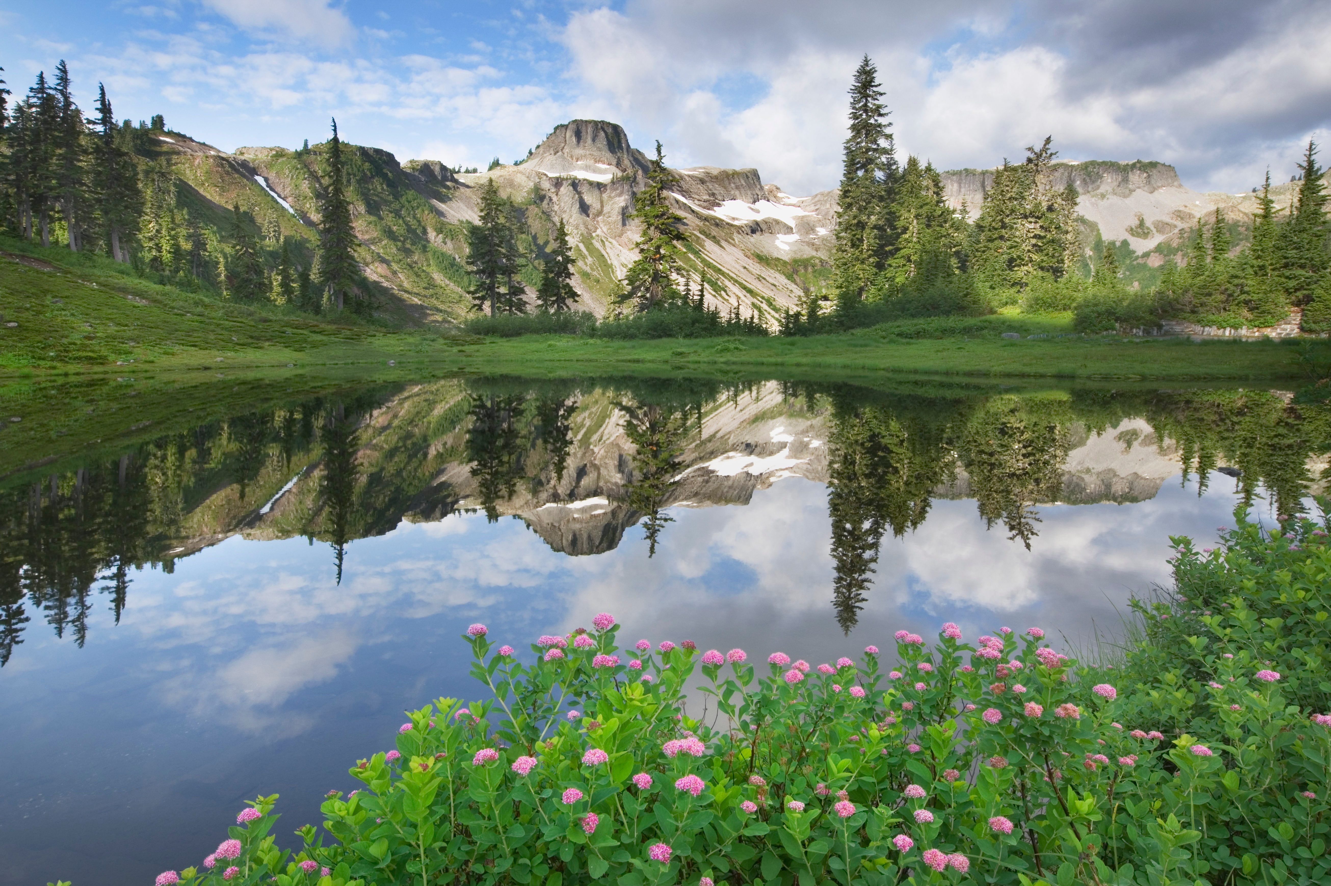 Heather Meadows Recreation Area, North Cascades