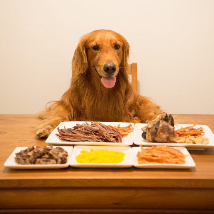 Golden retriever eating at the table