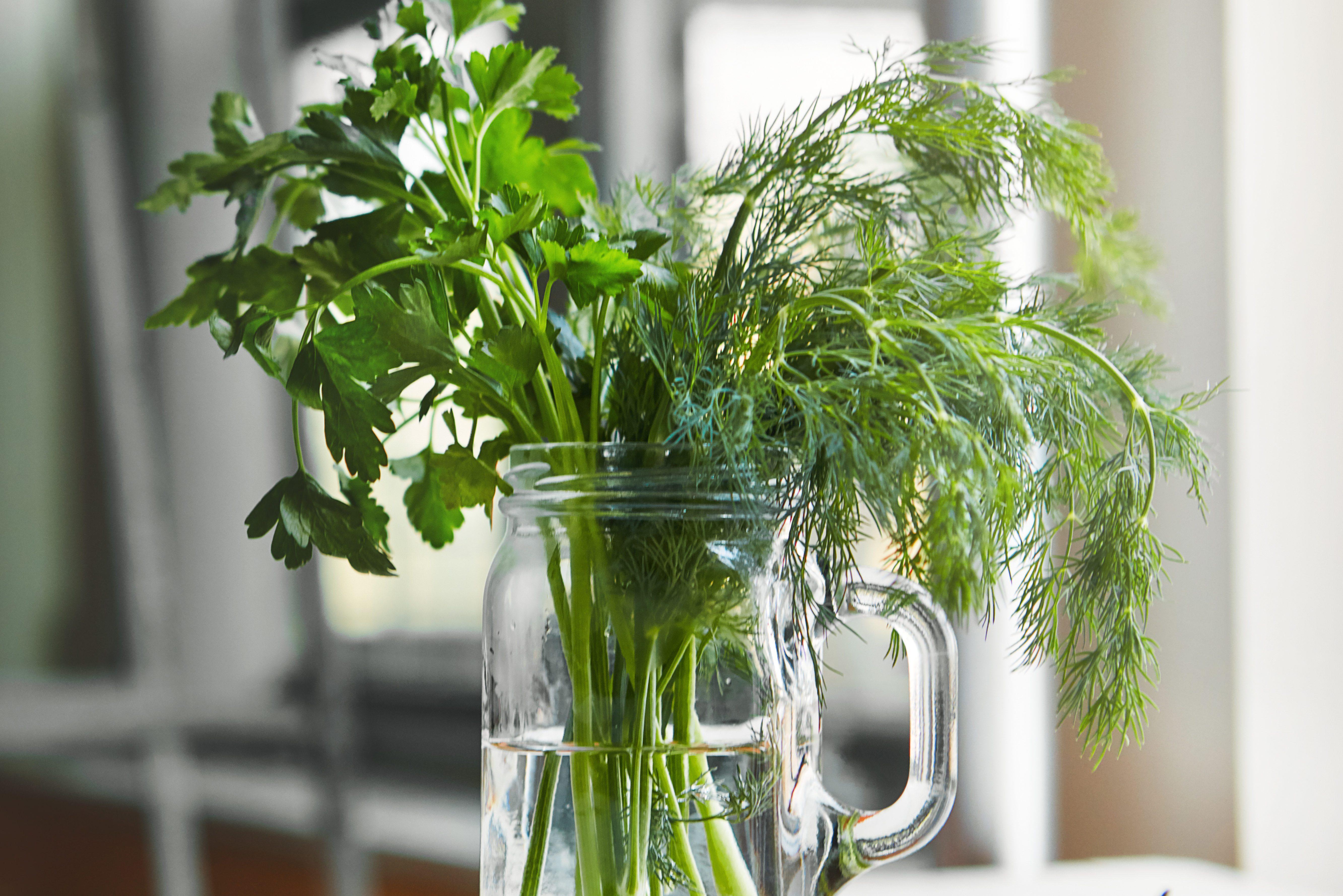 Bringing the garden into the kitchen