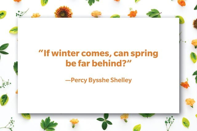 spring quote on floral background