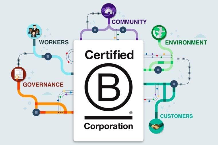 b corp flow illustration