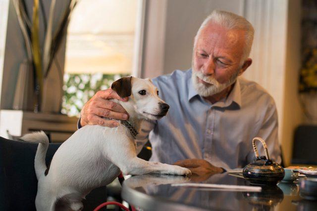 Senior man in a pet friendly restaurant