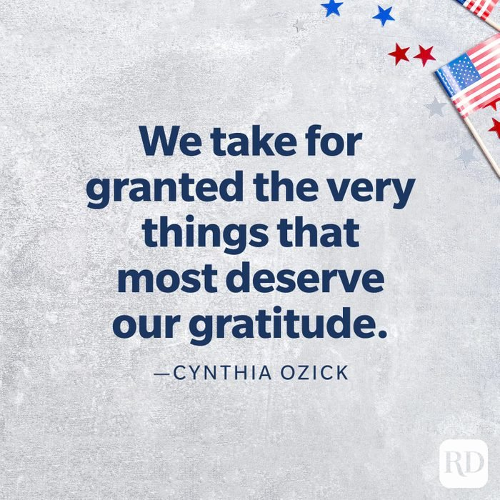 """""""We take for granted the very things that most deserve our gratitude.""""—Cynthia Ozick"""
