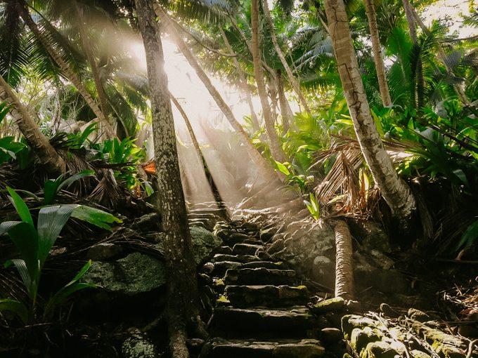 jungle Fregate Island Private