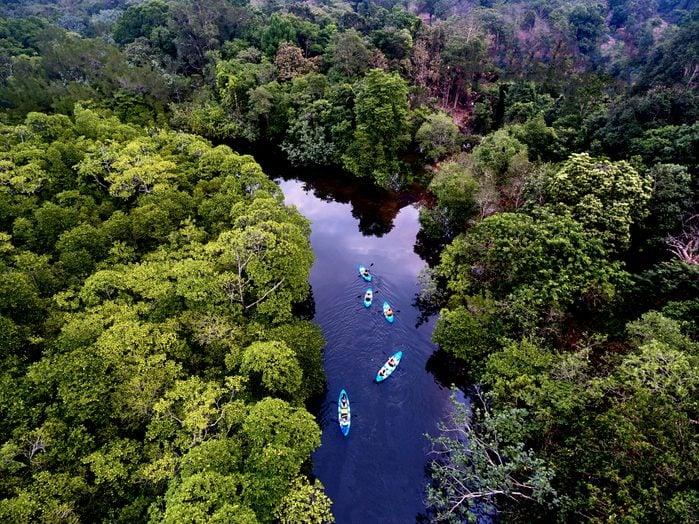 River swamp on Kho Rong island, Cambodia