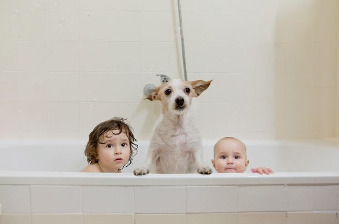 Two brothers take a bath with the dog