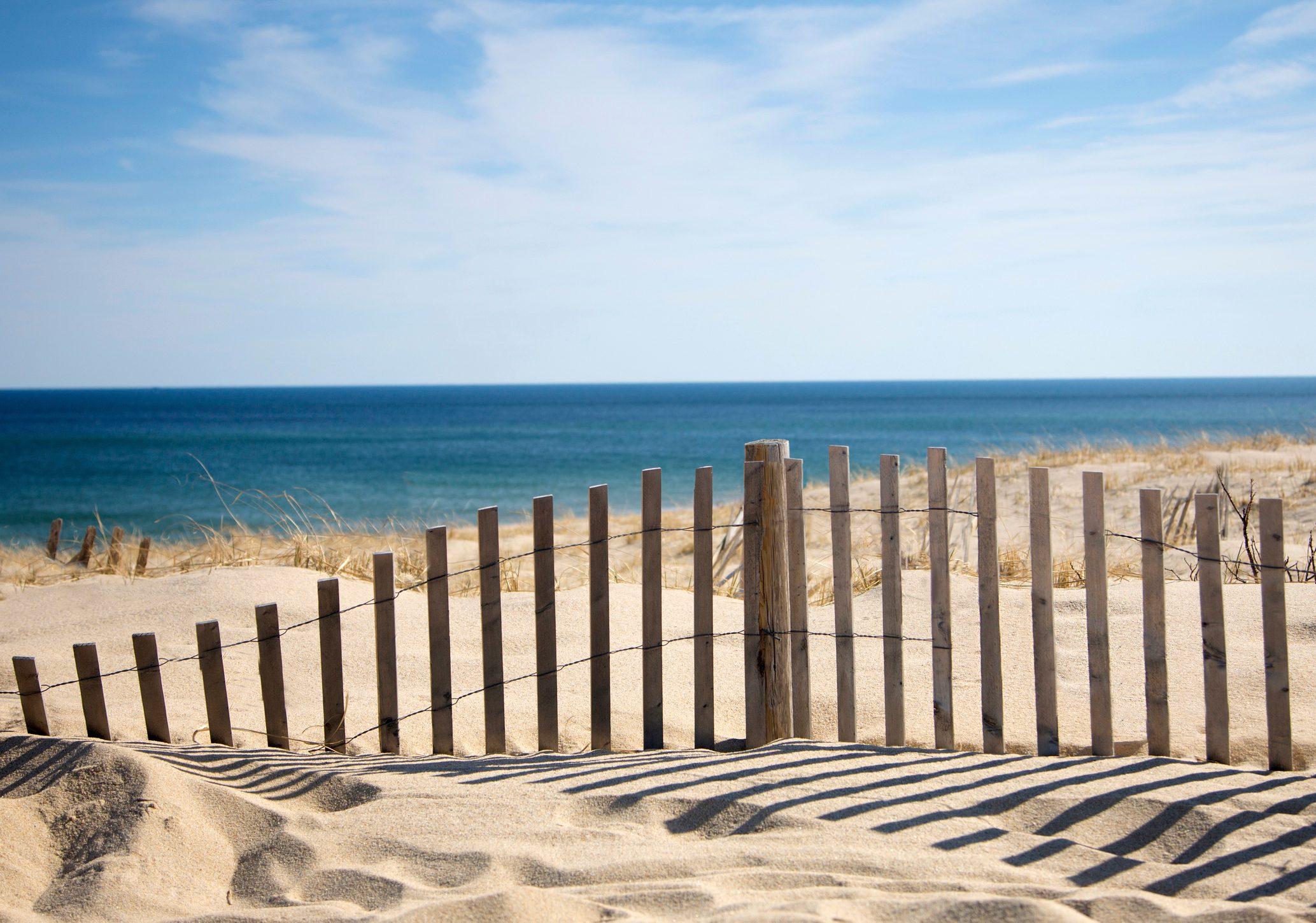 Sand fence at beach.