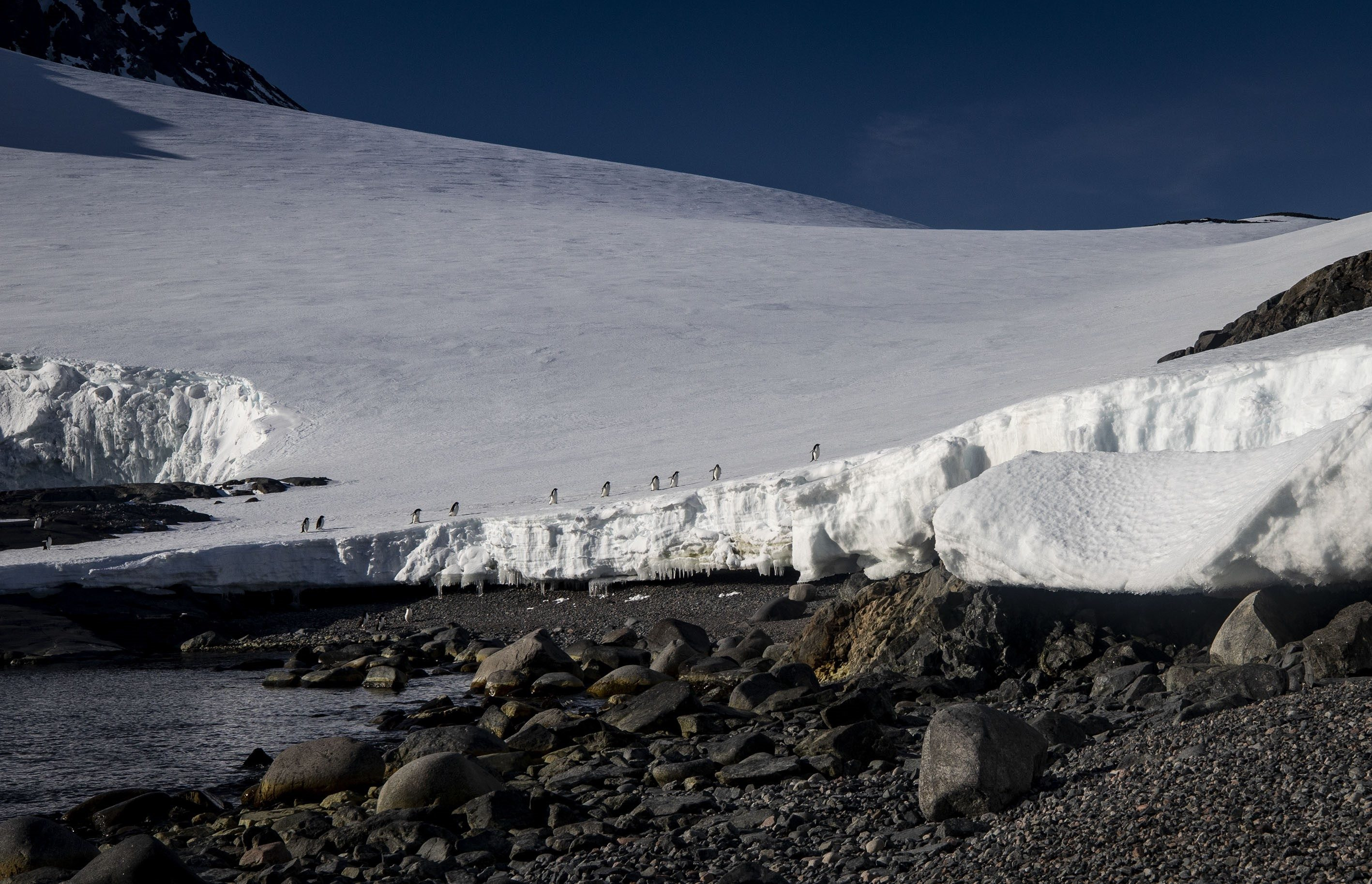 Antarctica: The White Continent