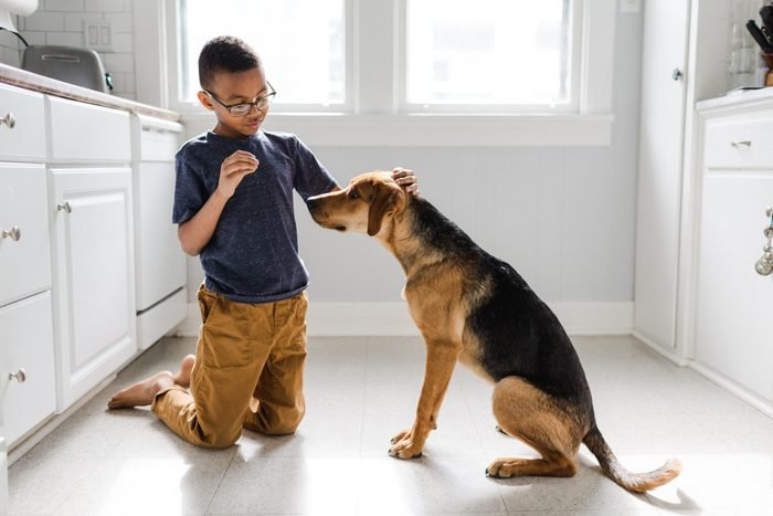 Adopted African American Boy with Adopted Dog
