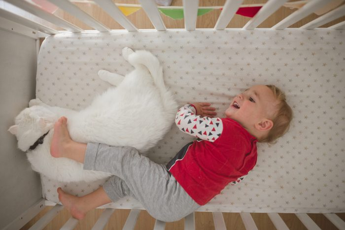 Baby boy putting his feet on the cat in the crib
