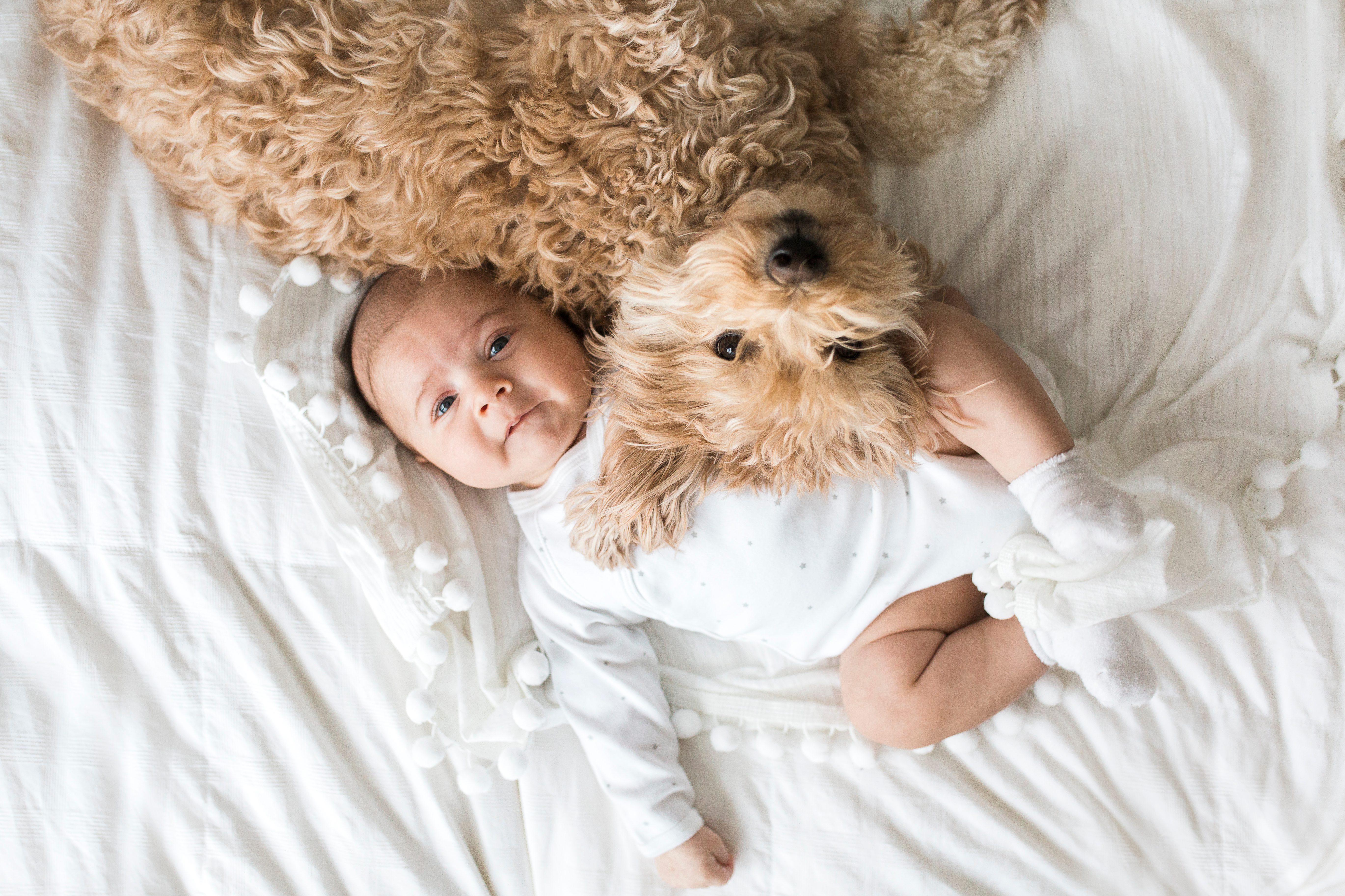 Baby Laying Next to Dog