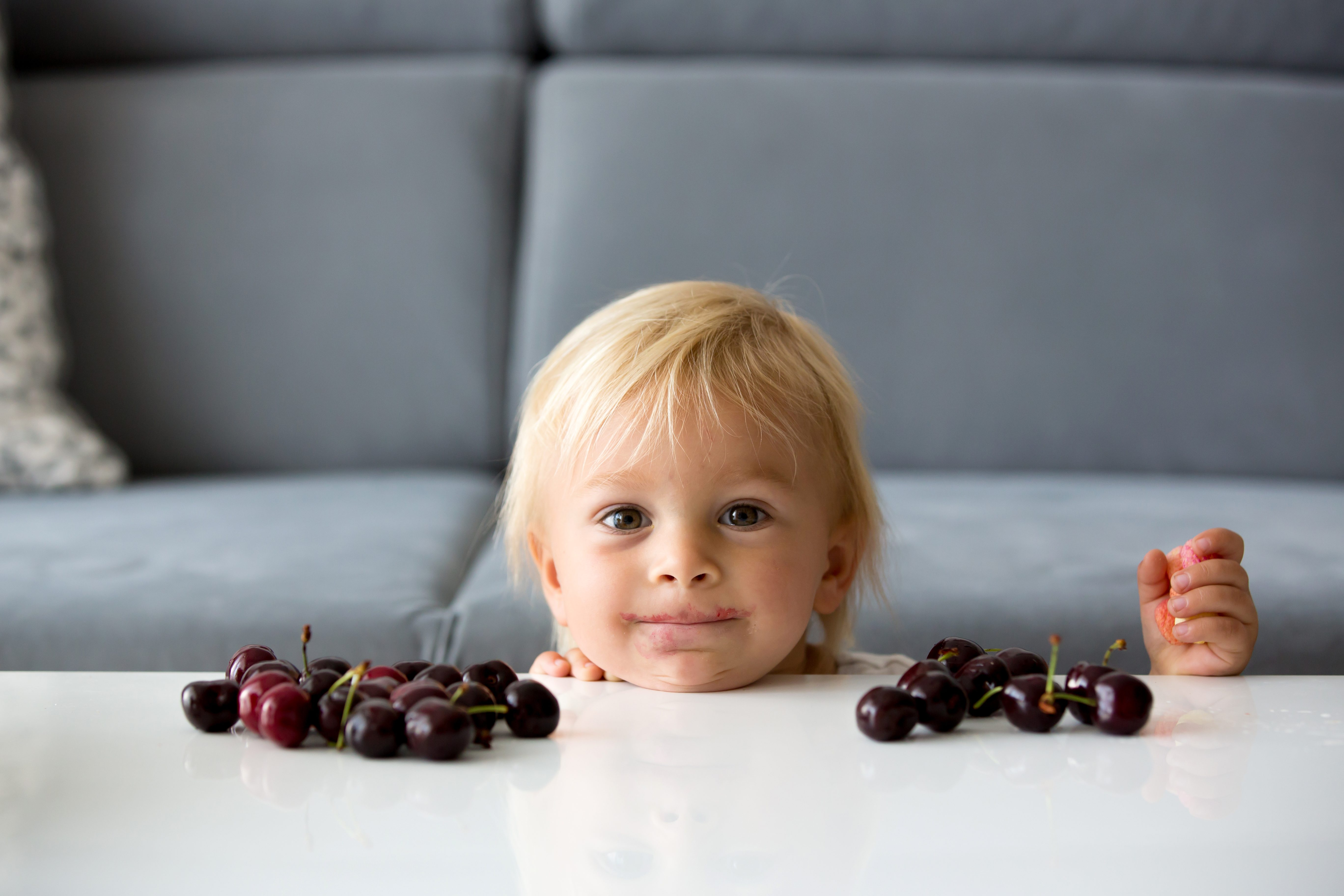 Sweet toddle boy, eating cherries, hiding behind a table, mischief look on his face