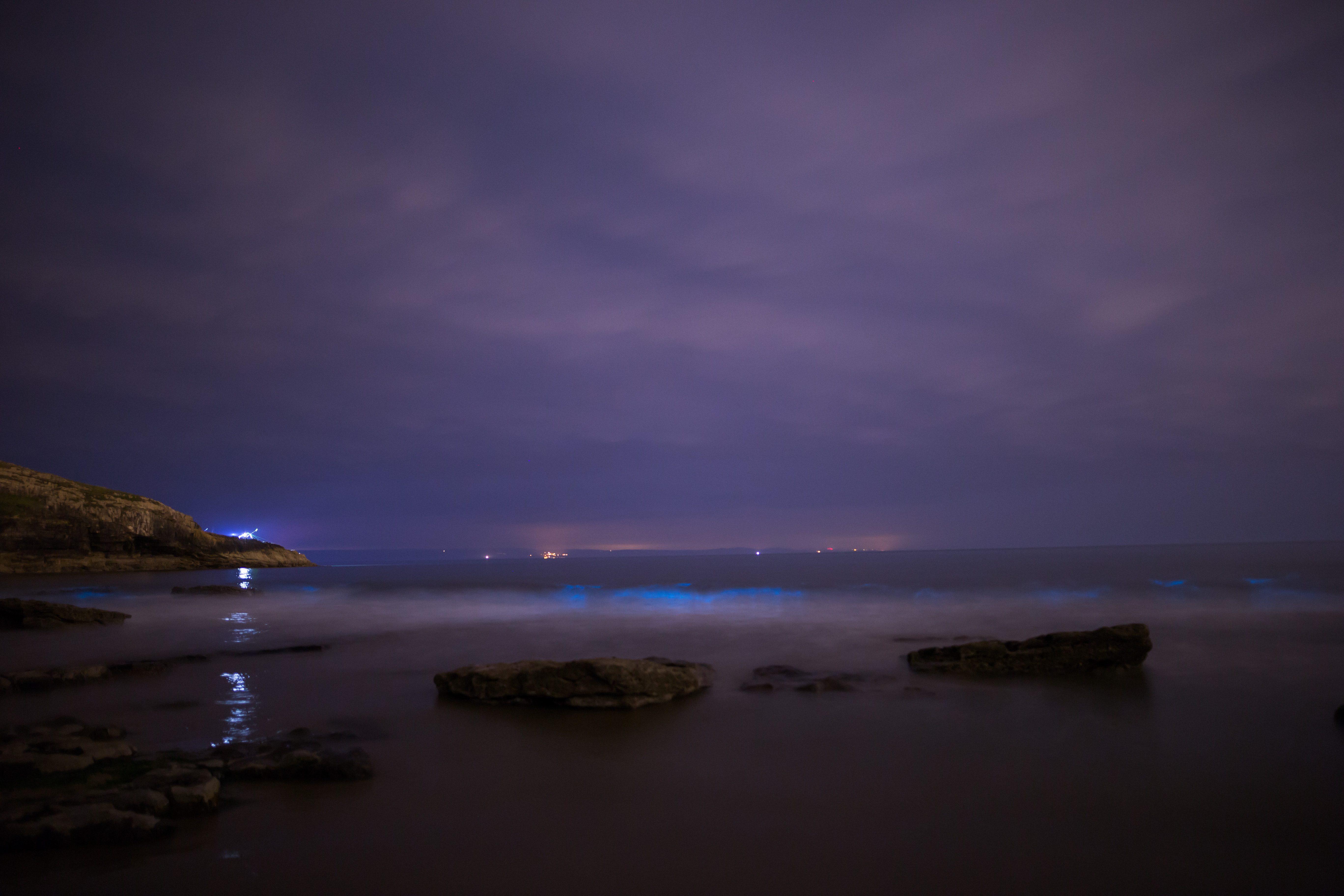 Bioluminescent Plankton South Wales 2019