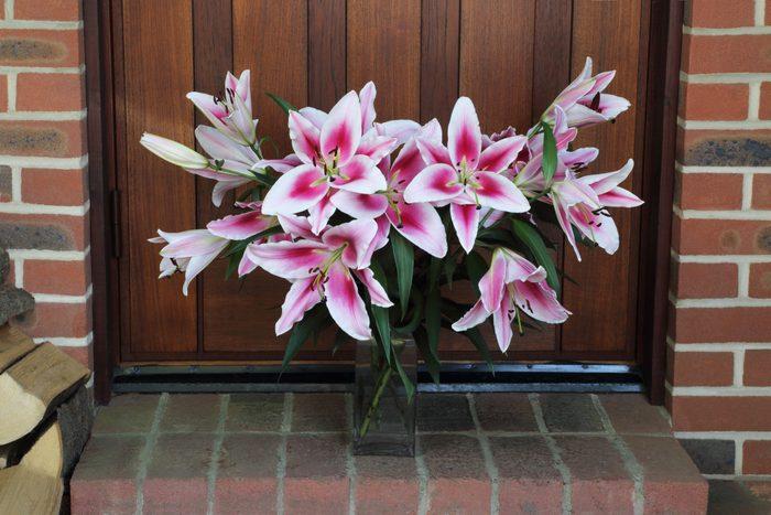Bunch of stargazer lilies left in vase on doorstep as gift.