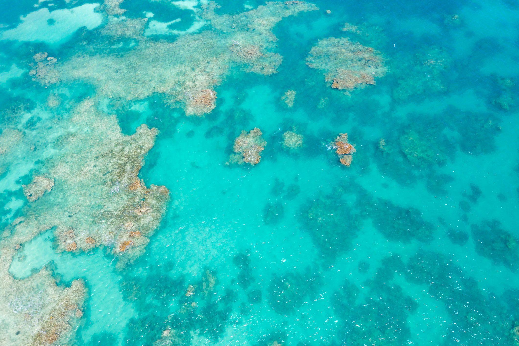 Aerial view of coral reef, Caribbean Sea, Antilles