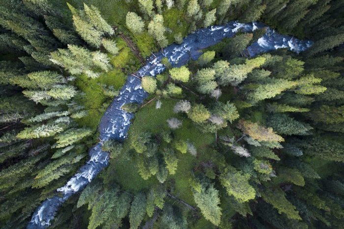 Drone point of view on Hyalite creek running through the forest of Montana